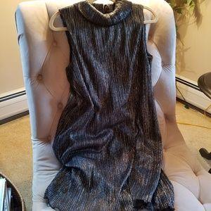 Shear Metallic Thread Tunic Dress